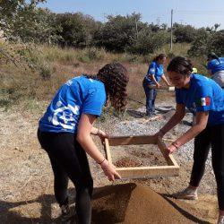 Cribar arena y tierra
